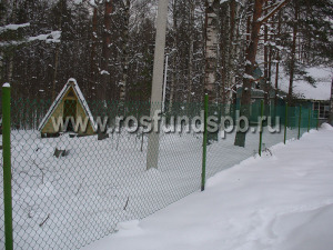 Забор-рабица-1